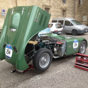 Woolmer Classic Engineering Ltd – Race Preparation, Transportation & Event Support